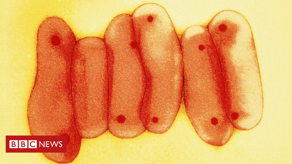 England TB rates fall by third since 2012