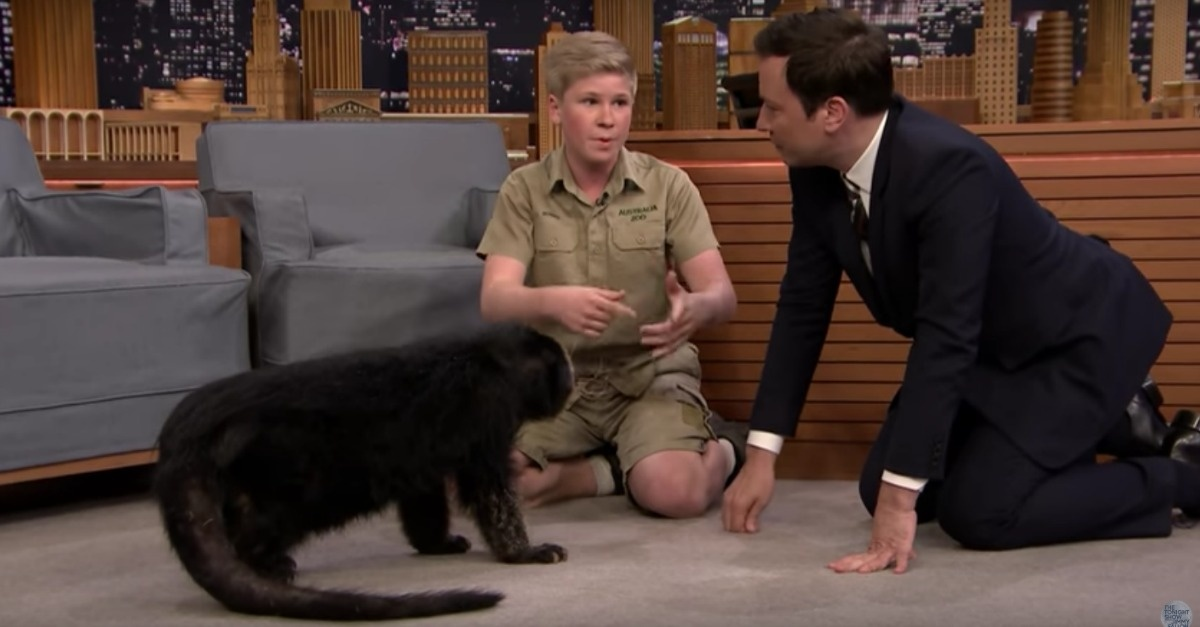 The Crocodile Hunter's Son Made a Return Appearance on 'The Tonight Show'