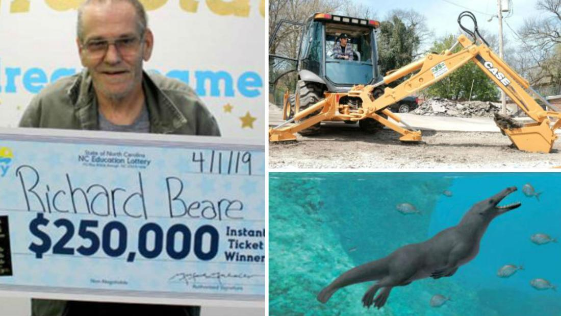 A lotto winner's dream trip, a strange whale and a selfless shopping spree