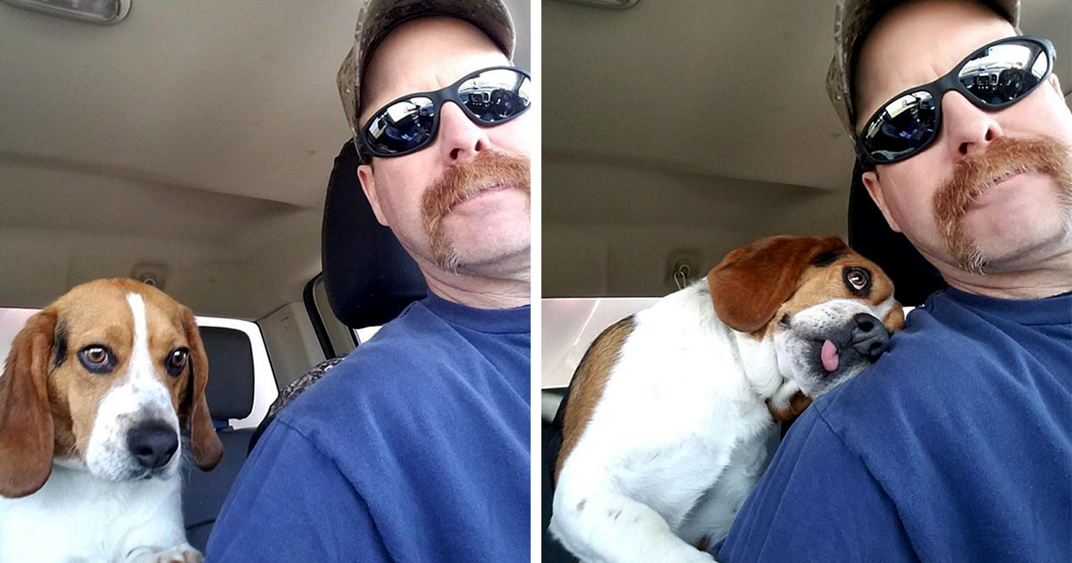 Human Rescues A Beagle From Being Euthanized In A Shelter, The Dog Can't Contain His Gratitude, Hugs His Rescuer