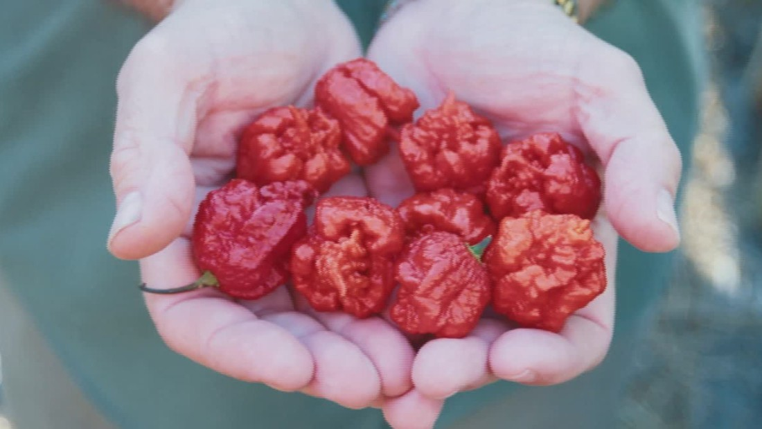 Brain effects of 'hottest pepper in the world' put man in hospital