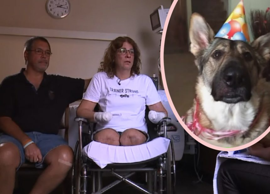 Hospitalized Woman Wakes Up With Legs & Hands Amputated - All Because A Dog Licked Her! - Perez Hilton